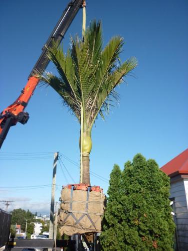 4x loads of Light towers from Wiri to Taharoa, Waikato